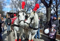 Moscow, Russia, April, 15, 2017. Parade of trams in 2017 year on Chistoprudny Boulevard. Horses harnessed in the competition Stock Images