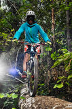 Biker riding in forest Stock Photo