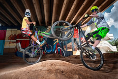 Mountain cyclists doing wheelie stunt on a mtb bike Royalty Free Stock Images