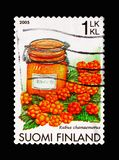 Cloudberry Rubus chamaemorus, Berries serie, circa 2005. MOSCOW, RUSSIA - AUGUST 18, 2018: A stamp printed in Finland shows Cloudberry Rubus chamaemorus, Berries royalty free stock photo