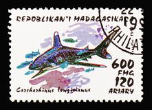 Oceanic Whitetip Shark (Carcharhinus longimanus), Sharks serie, circa 1993. MOSCOW, RUSSIA - AUGUST 18, 2018: A stamp printed in Madagascar shows Oceanic stock photos