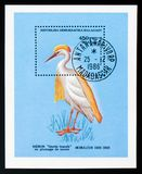 Cattle Egret Bubulcus ibis, Birds serie, circa 1986. MOSCOW, RUSSIA - AUGUST 29, 2017: A stamp printed in shows Cattle Egret Bubulcus ibis, Birds serie, circa Royalty Free Stock Photography