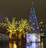 Moscow, Russia - December 2011: Christmas trees Royalty Free Stock Photo