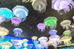 Moscow, Russia - December 10.2016. Chandeliers of form of jellyfish in the aquarium in Krasnogorsk Royalty Free Stock Photography