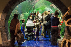 Moscow, Russia - December 10.2016. People in underwater tunnel in Krasnogorsk. the opening day. Moscow, Russia - December 10.2016. People in the underwater stock photo