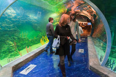 Moscow, Russia - December 10.2016. People in underwater tunnel in Krasnogorsk. the opening day. Moscow, Russia - December 10.2016. People in the underwater royalty free stock photos