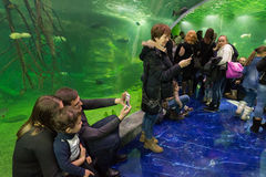 Moscow, Russia - December 10.2016. People in underwater tunnel in Krasnogorsk. the opening day. Moscow, Russia - December 10.2016. People in the underwater royalty free stock photo