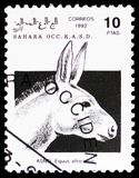 African Wild Ass (Equus africanus), Sahara Occ. serie, circa 1992. MOSCOW, RUSSIA - FEBRUARY 20, 2019: A stamp printed in Cinderellas shows African Wild Ass ( stock photography