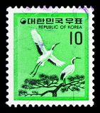 Red-crowned Crane (Grus japonensis), Fauna serie, circa 1979. MOSCOW, RUSSIA - FEBRUARY 10, 2019: A stamp printed in South Korea shows Red-crowned Crane (Grus stock photo