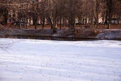 moscow russia Izmailovo parkerar arkivfoto