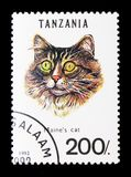 Maine Coon Felis silvestris catus, Cats serie, circa 1992. MOSCOW, RUSSIA - JANUARY 2, 2018: A stamp printed in Tanzania shows Maine Coon Felis silvestris catus Royalty Free Stock Photos
