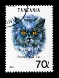 Persian Blue Felis silvestris catus, Cats serie, circa 1992. MOSCOW, RUSSIA - JANUARY 2, 2018: A stamp printed in Tanzania shows Persian Blue Felis silvestris Royalty Free Stock Photo