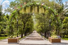 Pedestrian alley on Tverskoy Boulevard in the center of Moscow. Green plant arch. Moscow, Russia - June 3, 2018: Pedestrian alley on Tverskoy Boulevard in the Stock Images