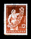 Bulgaria postage stamp shows woman worker with tobacco leaves, circa 1959 Royalty Free Stock Photos