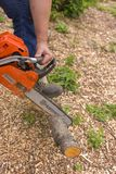 Moscow. Russia. 15 june 2019. Worker sawing twigs in the garden with a chainsaw.  stock photos