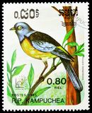 Blue-and-yellow Tanager Pipraeidea bonariensis, Birds serie, circa 1985. MOSCOW, RUSSIA - MARCH 23, 2019: Postage stamp printed in Kampuchea Cambodia shows Blue royalty free stock photos