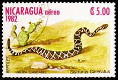 Massasauga Sistrurus catenatus, Reptiles serie, circa 1982. MOSCOW, RUSSIA - MARCH 23, 2019: Postage stamp printed in Nicaragua shows Massasauga Sistrurus stock photography