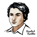 Rosalind Franklin Portrait. MOSCOW, RUSSIA - MARCH 13, 2018: Rosalind Franklin watercolor vector portrait with ink contours. English chemist and X-ray stock illustration