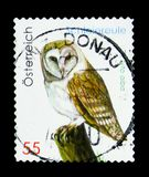 Western Barn Owl Tyto alba, Wildlife serie, circa 2009. MOSCOW, RUSSIA - MARCH 18, 2018: A stamp printed in Austria shows Western Barn Owl Tyto alba, Wildlife Stock Image