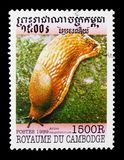Red Slug (Arion rufus), Molluscs serie, circa 1999. MOSCOW, RUSSIA - MARCH 18, 2018: A stamp printed in Cambodia shows Red Slug (Arion rufus&#x29 Royalty Free Stock Image