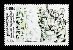 Snow Leopard (Panthera uncia), Wild Cats serie, circa 1998. MOSCOW, RUSSIA - MARCH 18, 2018: A stamp printed in Cambodia shows Snow Leopard (Panthera uncia) Stock Image