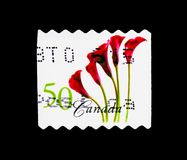 Red Calla Lily, Flower Definitives (1st series) serie, circa 200. MOSCOW, RUSSIA - MARCH 18, 2018: A stamp printed in Canada shows Red Calla Lily Royalty Free Stock Images