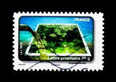 Green Algae, Water Protection serie, circa 2010. MOSCOW, RUSSIA - MARCH 18, 2018: A stamp printed in France shows Green Algae, Water Protection serie, circa 2010 royalty free stock photo
