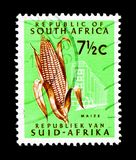 Maize, Definitive Issue - Decimal Issue serie, circa 1964. MOSCOW, RUSSIA - MARCH 18, 2018: A stamp printed in South Africa shows Maize, Definitive Issue royalty free stock photos