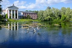 MOSCOW, RUSSIA - May 30, 2018. The Botanical Garden named after N.V. Tsitsina in Moscow. Botanical Garden named after N.V. Tsitsina in Moscow. Pond near the Royalty Free Stock Images