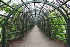 Moscow Russia. Museum-Estate Arkhangelskoye. Trellis arches. Arkhangelskoye Palace is a historical estate located around 20 kilometers to the west from Moscow Stock Photography