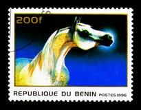 Horse (Equus ferus caballus), Horses serie, circa 1996. MOSCOW, RUSSIA - NOVEMBER 26, 2017: A stamp printed in Benin shows Horse (Equus ferus Royalty Free Stock Images