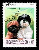 Shih Tzu (Canis lupus familiaris), Dogs serie, circa 1998. MOSCOW, RUSSIA - NOVEMBER 26, 2017: A stamp printed in Benin shows Shih Tzu (Canis royalty free stock photography