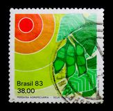 Brazilian agricultural research achievements - soybean, serie, circa 1983. MOSCOW, RUSSIA - NOVEMBER 23, 2017: A stamp printed in Brazil shows Brazilian Royalty Free Stock Photo