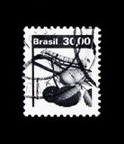 Natural Economy Resources - Silk, serie, circa 1982. MOSCOW, RUSSIA - NOVEMBER 23, 2017: A stamp printed in Brazil shows Natural Economy Resources - Silk, serie royalty free stock image