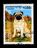 Pug (Canis lupus familiaris), Dogs serie, circa 1997. MOSCOW, RUSSIA - NOVEMBER 24, 2017: A stamp printed in Cambodia shows Pug (Canis lupus familiaris), Dogs royalty free stock images