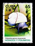 Cuban Land Snail (Polymita picta ssp. muscarum), Snails and Mush. MOSCOW, RUSSIA - NOVEMBER 25, 2017: A stamp printed in Cuba shows Cuban Land Snail &# Stock Photo