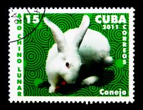 Domestic Rabbit (Oryctolagus cuniculus domesticus), Chinese New. MOSCOW, RUSSIA - NOVEMBER 25, 2017: A stamp printed in Cuba shows Domestic Rabbit &# Royalty Free Stock Image