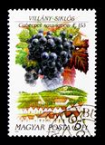 Villany Siklos, Hungarian Wine Regions serie, circa 1990. MOSCOW, RUSSIA - NOVEMBER 26, 2017: A stamp printed in Hungary shows Villany Siklos, Hungarian Wine stock photo
