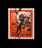 Wind God, Fauna, Flora and Cultural Heritage serie, circa 1971. MOSCOW, RUSSIA - NOVEMBER 23, 2017: A stamp printed in Japan shows Wind God, Fauna, Flora and Royalty Free Stock Photo