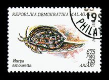 Lesser Harp (Harpa amouretta), Molluscs serie, circa 1993. MOSCOW, RUSSIA - NOVEMBER 26, 2017: A stamp printed in Madagascar shows Lesser Harp (Harpa amouretta Stock Photo