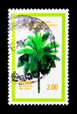 Palm tree, devoted to 10th Aniversary of APAC community, serie, circa 1979. MOSCOW, RUSSIA - NOVEMBER 23, 2017: A stamp printed in Sri Lanka shows palm tree Stock Image