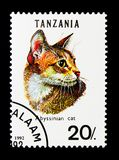 Abyssinian cat (Felis silvestris catus), serie, circa 1992. MOSCOW, RUSSIA - NOVEMBER 25, 2017: A stamp printed in Tanzania shows Abyssinian cat &#x28 Royalty Free Stock Photo