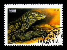 Water Monitor (Varanus salvator), Reptiles of Tanzania serie, ci. MOSCOW, RUSSIA - NOVEMBER 25, 2017: A stamp printed in Tanzania shows Water Monitor Stock Photography