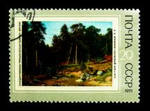'Pine forest ' 1872, I.I. Shishkin (1832-1898), Cooperative for A. MOSCOW, RUSSIA - NOVEMBER 26, 2017: A stamp printed in USSR (Russia) shows 'Pine forest ' 1872 stock images
