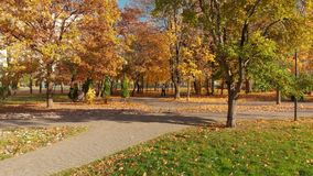 Moscow, Russia - October 17. 2018. Autumn park on clear day in Zelenograd stock video footage