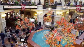 Moscow, Russia - October 09.2016. beautiful fountain into GUM at Moscow, shopping home stock video