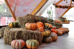 Moscow, Russia, October 4, 2018: the Festival Moscow seasons Golden autumn . The site on Petrovka street. Harvest stock photos