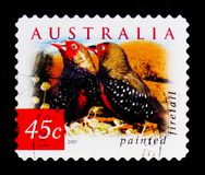 Painted Firetail Emblema picta, Nature of Australia - Desert Birds serie, circa 2001. MOSCOW, RUSSIA - OCTOBER 3, 2017: A stamp printed in Australia shows Royalty Free Stock Image