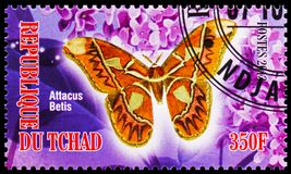 Attacus Betis, Butterflies serie, circa 2013. MOSCOW, RUSSIA - OCTOBER 21, 2018: A stamp printed in Chad shows Attacus Betis, Butterflies serie, circa 2013 royalty free stock photography