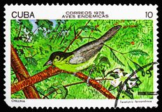 Yellow-headed Warbler (Teretistris fernandinae), Endemic birds serie, circa 1978. MOSCOW, RUSSIA - OCTOBER 21, 2018: A stamp printed in Cuba shows Yellow-headed royalty free illustration